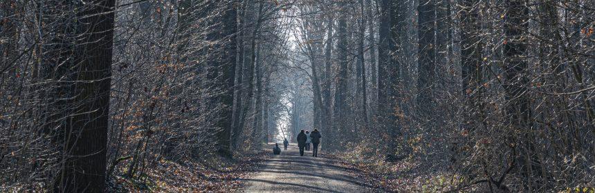 Im Winter durch Sonnenlicht Vitamin-D tanken